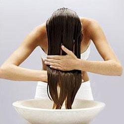 Quellolio di cocco o olio doliva sono migliori per capelli