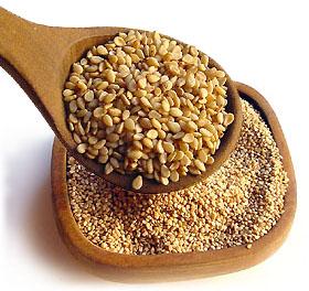 dal punto di vista nutrizionale i semi di sesamo sono ricchi di acido oleico tipico dellolio di oliva ed acido linoleico precursore degli acidi grassi