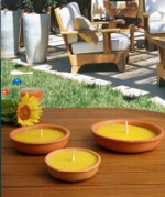Citronella / Insetto Repellenti
